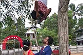 开挂!印度摄影师倒挂树上为新人拍照