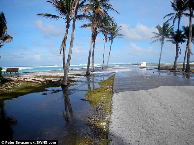 海平面上升将致低洼岛屿最快2030年无法居住