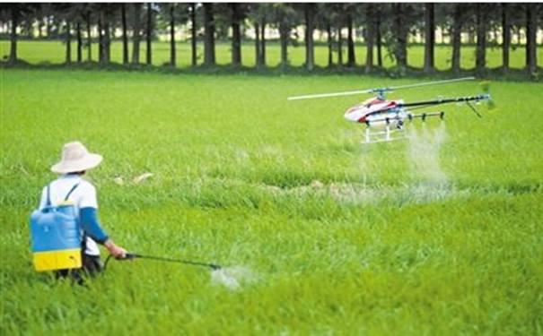 农业无人机不仅能喷农药 替蜜蜂授粉也突然火了