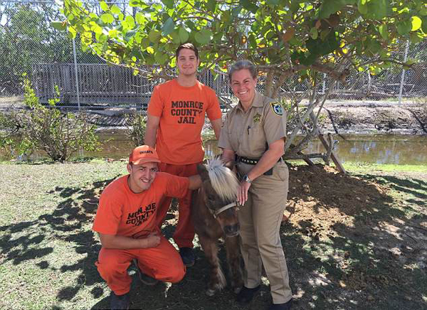 美监狱设动物园助服刑者摆脱坐牢阴影重新做人