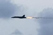 实拍美军战机撞鸟瞬间