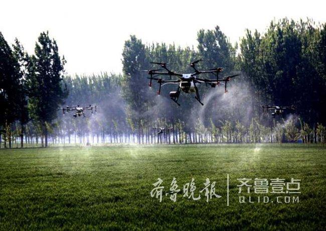 看呆!啥叫现代农业!邹城40多架无人机一起撒农药!