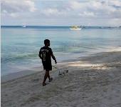 菲为整治长滩岛环境闭岛6个月 多数居民表支持