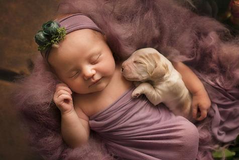 摄影师为婴儿与动物好友拍写真 暖化人心