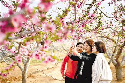 河北省旅游呈现新态势,生态采摘古镇休闲成热门