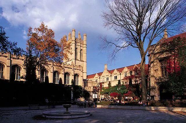 """美国名校的严酷真相:我""""活着""""走出了芝加哥大学的方庭"""