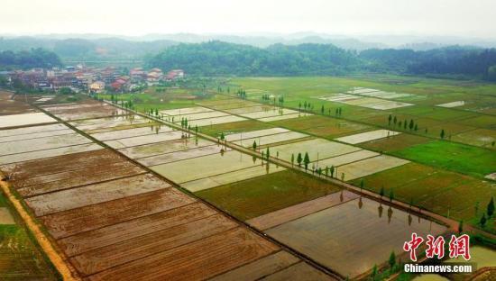 全国农村承包地确权工作进入收尾阶段