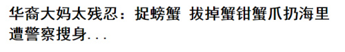 """媒体:华人大妈超市""""偷""""菜叶遭批 上升到族群就没意思了"""
