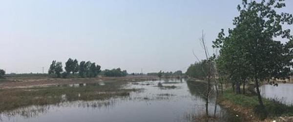 """河北晋州回应""""环保设备间歇停摆污水直排河流"""":十人被处分"""