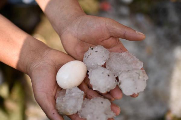 贵州松桃遭冰雹袭击 农户受灾严重