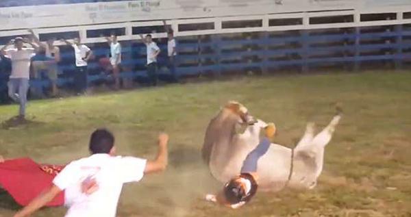 牛仔骑手竞技场惨遭公牛压身甩出不幸去世