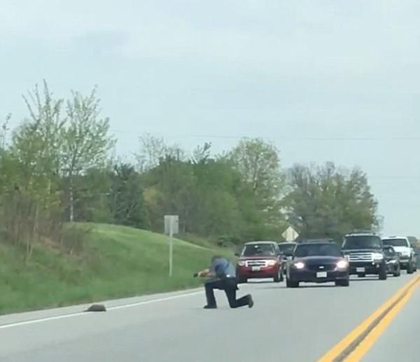 美警察因发狂土拨鼠妨碍交通将其射杀