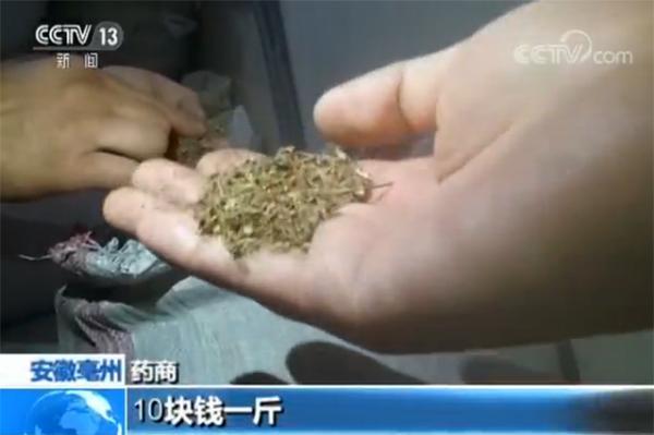 央视调查低价中药材:按比例掺次品假货,回收药渣再销售