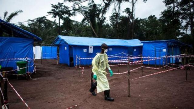 埃博拉病毒再袭刚果(金),已有17人死亡