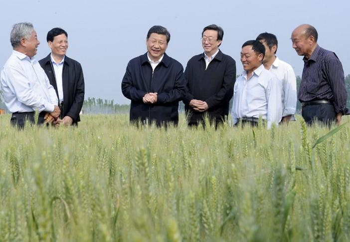 """习近平引领中国经济""""新""""""""高""""""""度"""""""