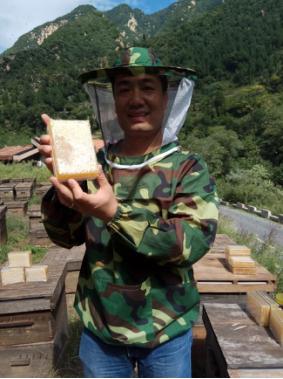 祝永东:坚守在秦岭大山深处的养蜂人