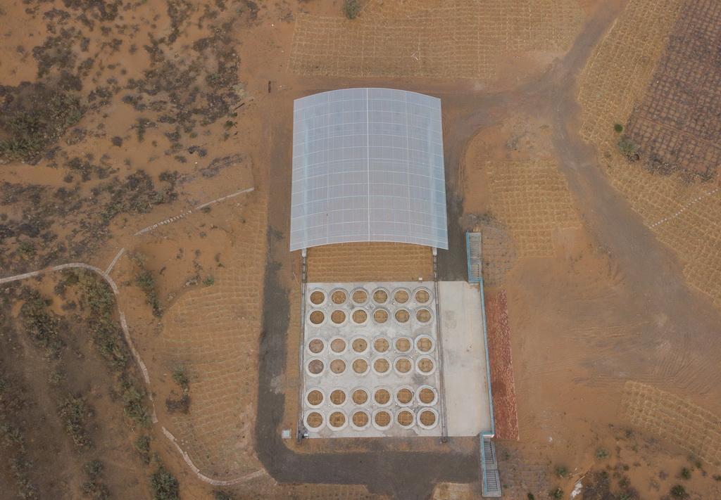 我国沙区唯一的大型称重式蒸渗仪群建成
