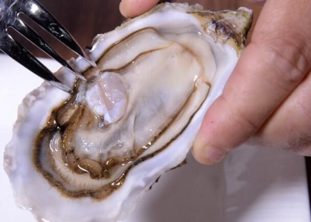 吃海鲜有风险 英国近七成生蚝样本带诺如病毒