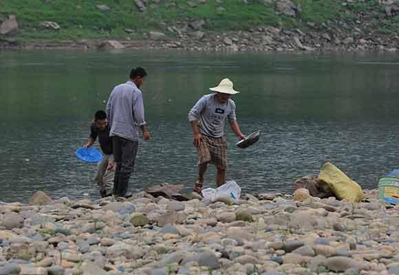 实拍淘金者:重庆市民磁器口河滩挖金子