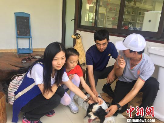 """上海口岸五星检疫犬""""四眼""""退役进新家养老"""
