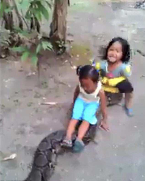 印尼两女童坐巨蟒身上嬉笑玩耍引发网友热议