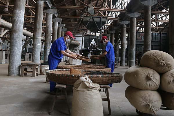 安徽池州:筛茶师从业40载日制茶500斤 最贵售1斤万元