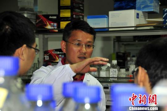 媒体:中国科学家裴端卿入选欧洲分子生物学组织外籍成员