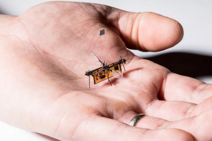 这仿生微型机器人 长得像苍蝇居然真能飞