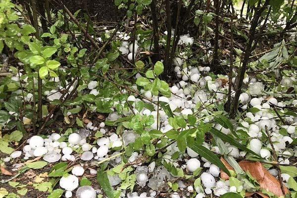陕西商南突降特大冰雹 最大直径4厘米砸碎车窗