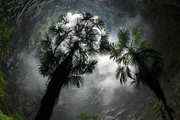 """湖北恩施:""""天坑""""生态之美"""