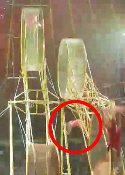 惊魂!哥伦比亚杂技演员9米高空跌落仅受轻伤