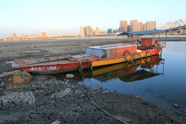 松花江哈尔滨段罕见低水位 渔船搁浅沟渠干涸