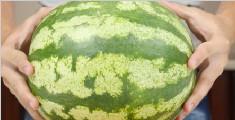 夏天到了, 这才是切西瓜的正确打开方式