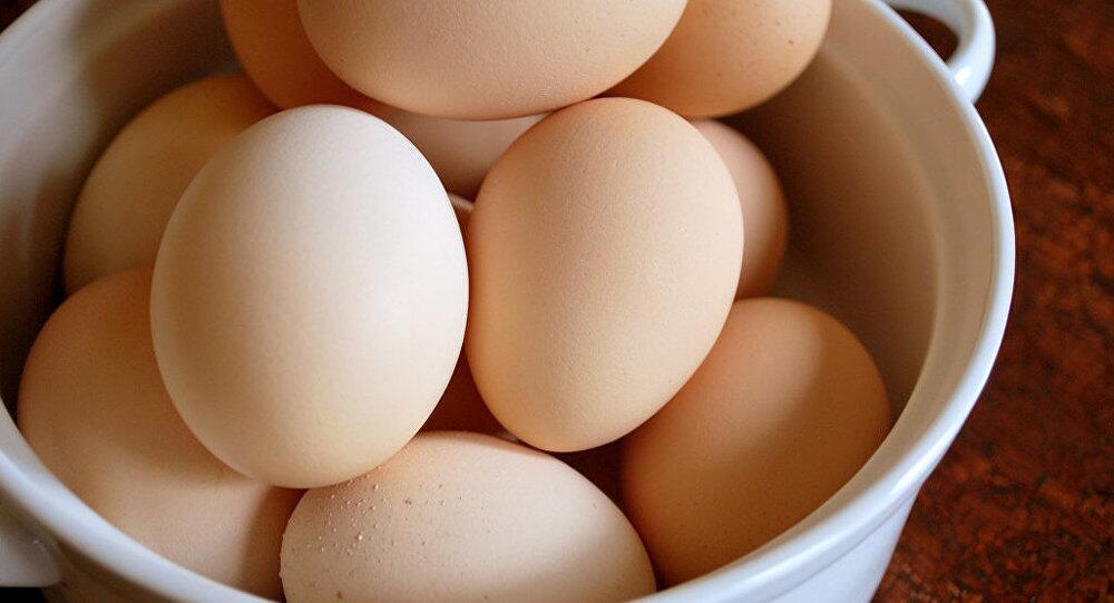 科学家:一天一鸡蛋有助降低心血管疾病风险