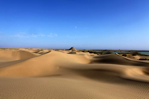 新疆岳普湖沙漠游受热捧