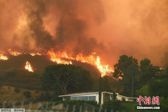 3700万美元!美国少年燃烟花引发山火 被判巨额赔款