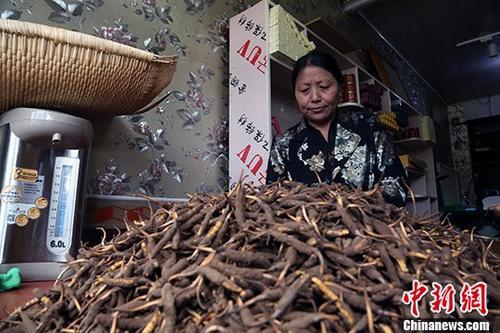 """中国""""冬虫夏草第一县""""迎来2018年首个交易日"""
