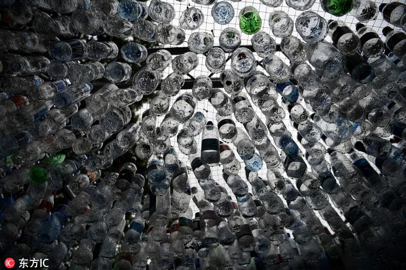 伦敦动物园现1.5万个塑料瓶制成建筑 呼吁保护海洋