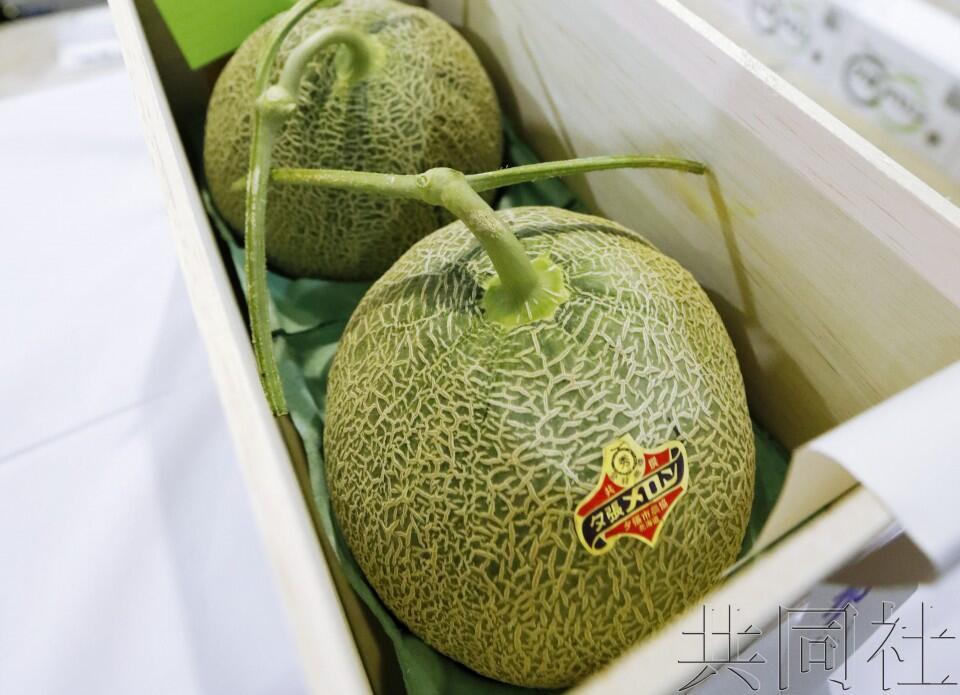 日本北海道夕张甜瓜拍出19万人民币天价创新高
