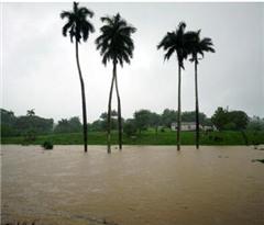 美国亚热带风暴来袭 三州宣布进入紧急状态