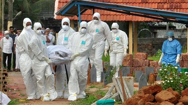 印度尼帕病毒已致使13名流殒命 引发大众恐慌