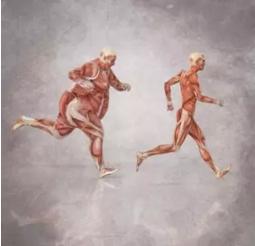 康宝莱减肥将增加益生菌产品帮助人们科学减肥