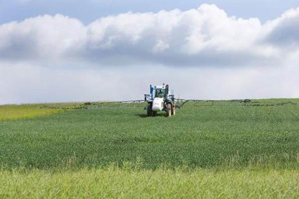 决心已定 法国政府承诺2021年禁用草甘膦除草剂