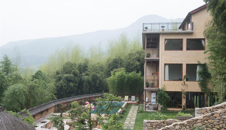 青山绿水间的生机:莫干山民宿助推乡村振兴