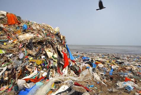 印度海滩成垃圾场 志愿者数年如一日坚持清理
