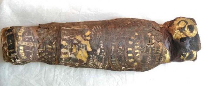 研究:疑似古埃及老鹰的木乃伊或是人类胎儿