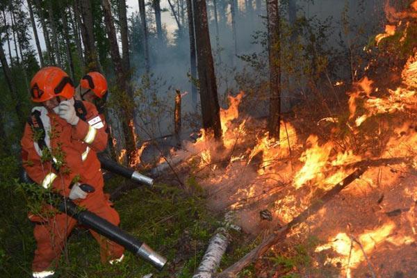 内蒙古大兴安岭林区发生两起森林火灾