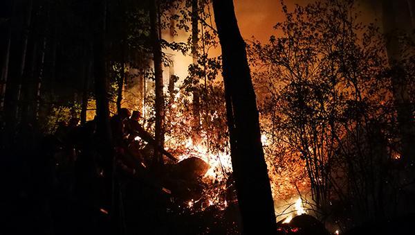 大兴安岭一火场成功扑灭明火,另一火场再增千人仍在紧张救援