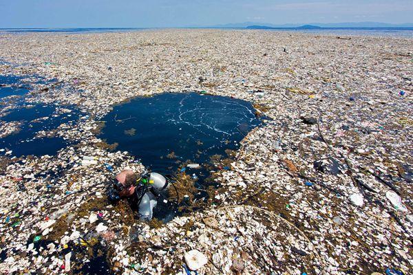 世界环境日!各国塑料污染画面令人心碎
