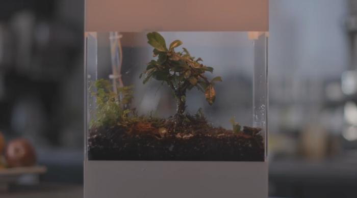 """谷歌打造基于AI的玻璃容器 可""""展示""""世界天气"""